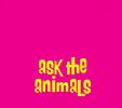 Ask The Animal